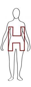 h body shape